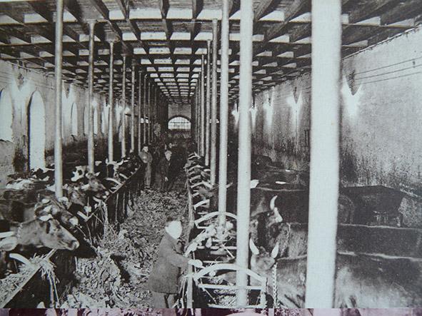 La ferme( La grande étable)